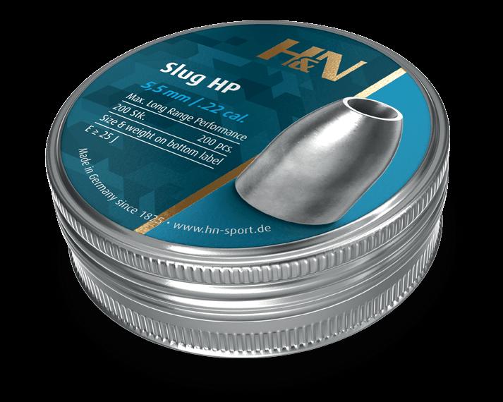 Slug HP .22